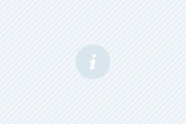 Sveriges största digitala träd